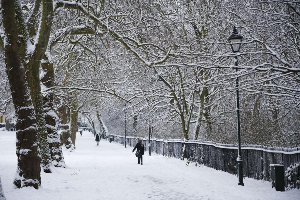 snowpeckham